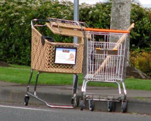Carts2(web)