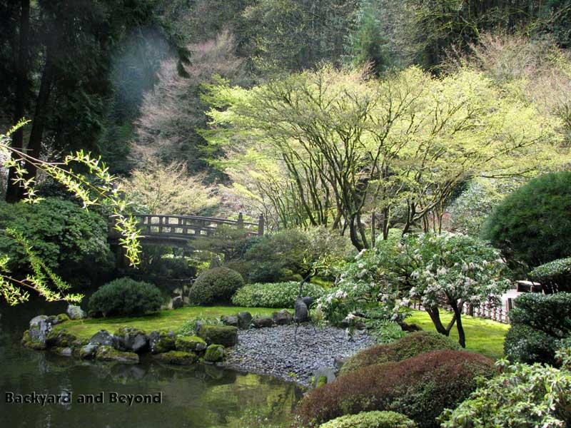 Japanese Tea Garden Backyard : This little water bowl is part of the tea garden