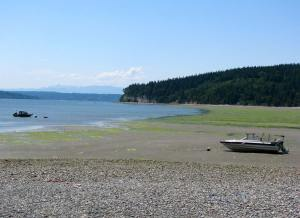 low-tide2(blog)