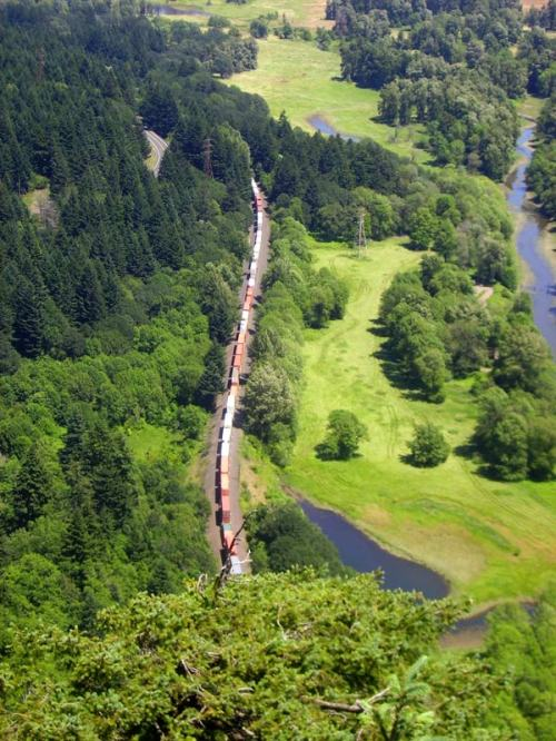 Train1(blog)