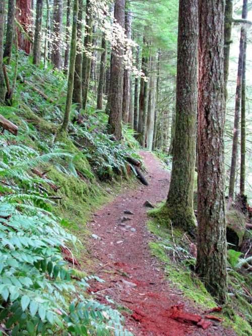 Hike25(blog)