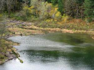 lake1(blog)