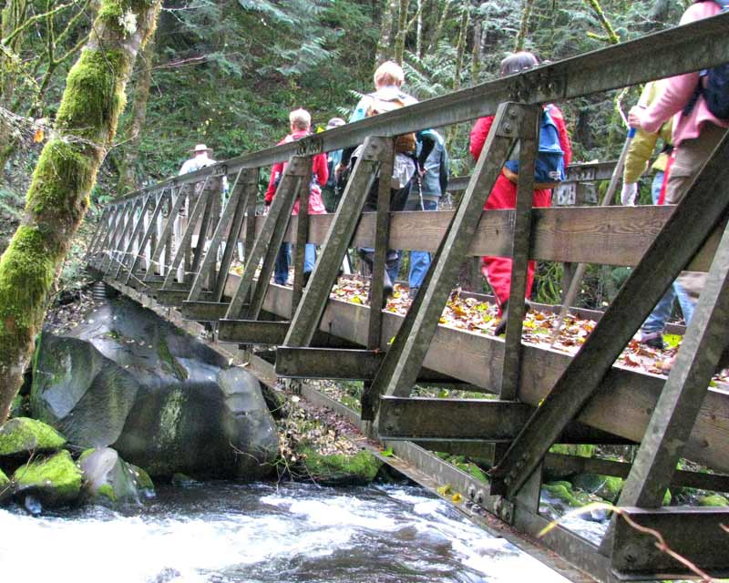 herman creek pinnacles hike backyard and beyond